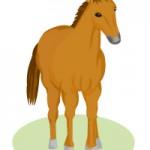 斜め前からみた馬のイラスト