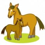 馬の親子のイラスト